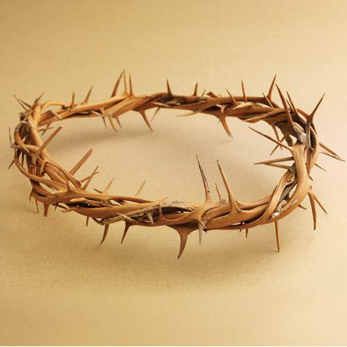 508397 - Crown of Thorns